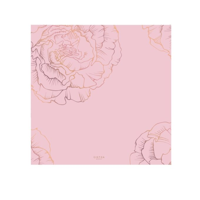 amelia roosa sall